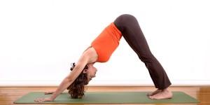 Image credit: http://yoga.sportsxfitness.com/vinyasa-yoga-poses-beginners/